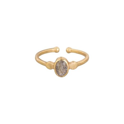 Small Oval Ring Gold