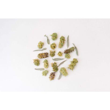 Monovarietals Organic Mountain Tea 25 g