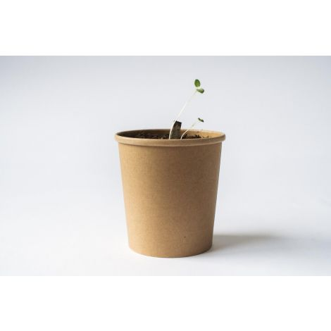 Plant it Urban 35 g