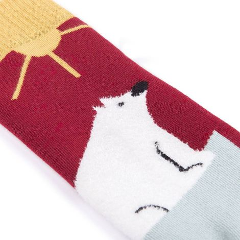 Save The Arctic Socks red|blue|yellow